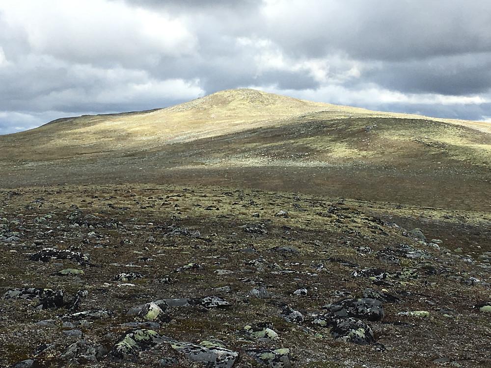 Leirhøi fra vest