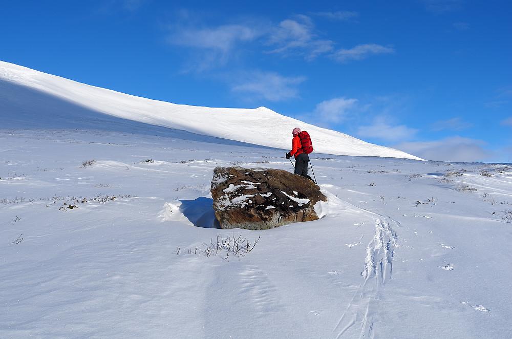 Opp mellom Brennknatten og Gråhøe