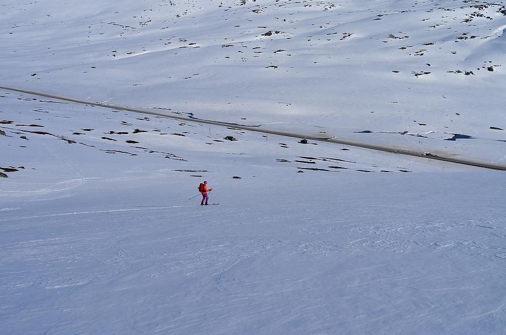 Strynefjellsveien