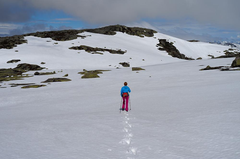 Fremdeles skiforhold