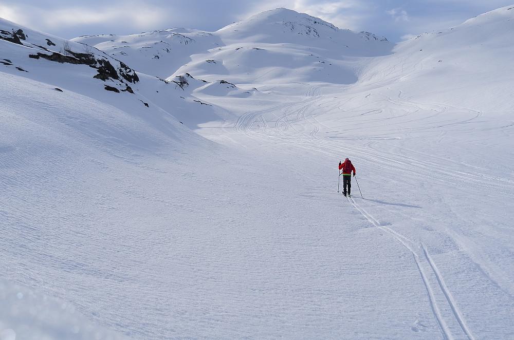 Rivartinddalen