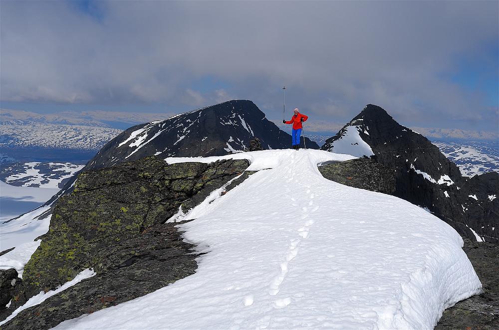 Til topps på Svartfjell 1872