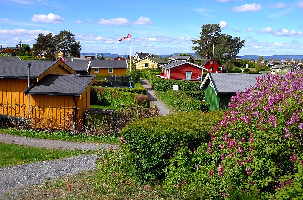 Idyll på Lindøya