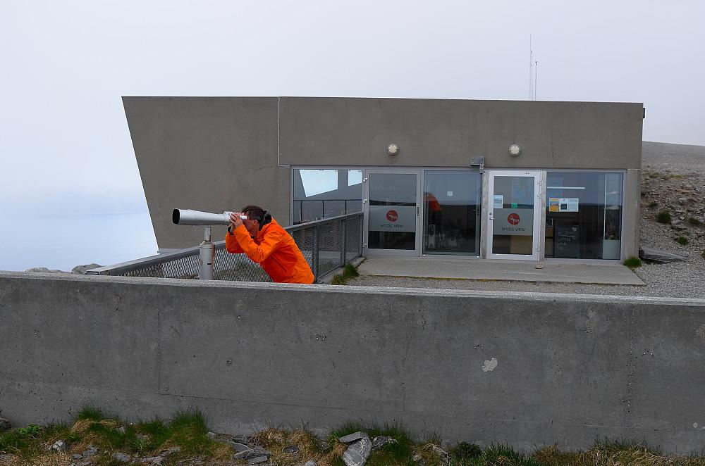 Artic View