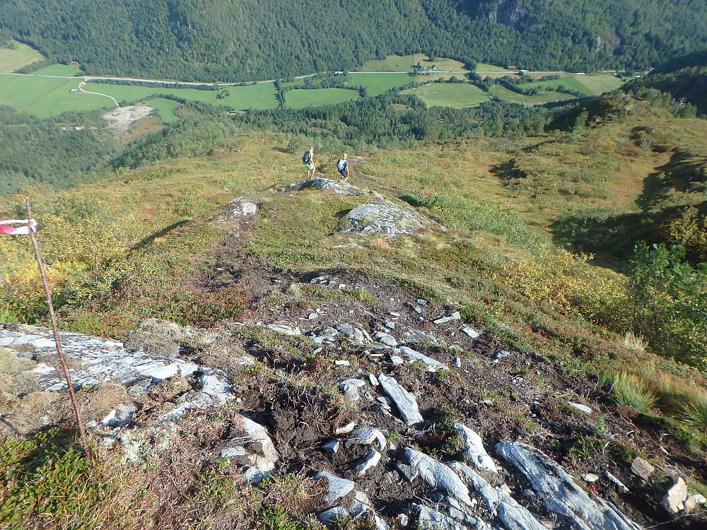 Ned dalen før man skal krysse veien og opp til topp 4 Røta