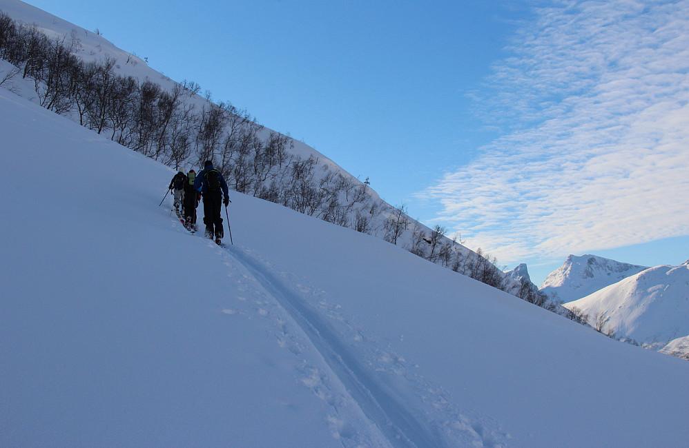 Vi vinner høyde. Romsdalshorn, Blånebba og Storhesten skimtes bak til høyre.