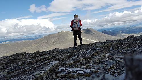 På Stygghøin Øst. Småhaugan mot nord.