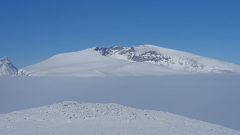 Snøhettamassivet
