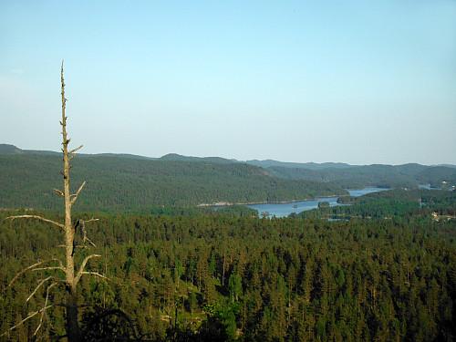 Utsikt fra Store Solåsen