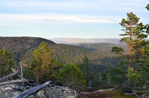 Trigpunkt nordre Kjellarfjell