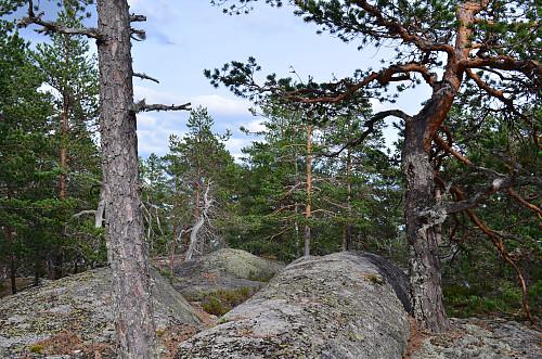 toppunkt Meinstadfjellet