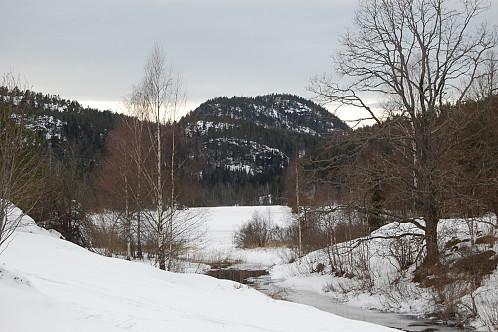 Øykollen sett fra jordet på Frønes.