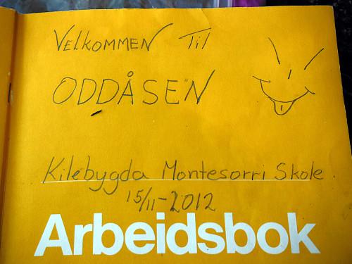 Trimbok på Oddeåsen