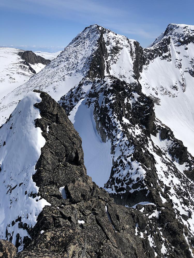 Oppe etter å ha traversert øst- nordøstflanken under Midtre Skarvflytinden. Bratt, holdt øverst mot berget, gode snøforhold. Tilbakeblikk mot Søre etc. fra toppen Liten fortopp til Midtre i forgrunnen.