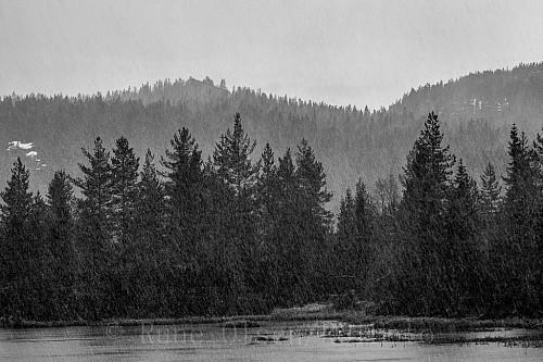Snøværet i svarthvitt