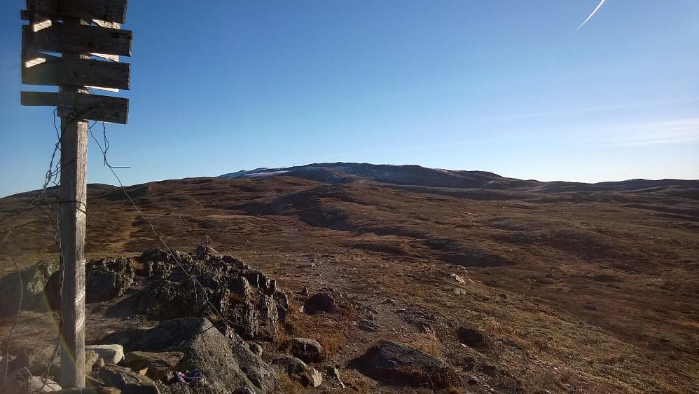 Mot Spåtind fra vest, på høyde 1197 m.