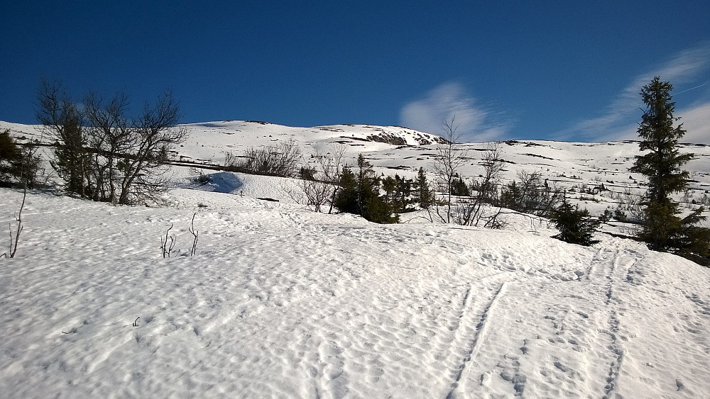 På vei oppover fra parkeringa i retning Sørbølfjellet; toppen ser man ikke her.