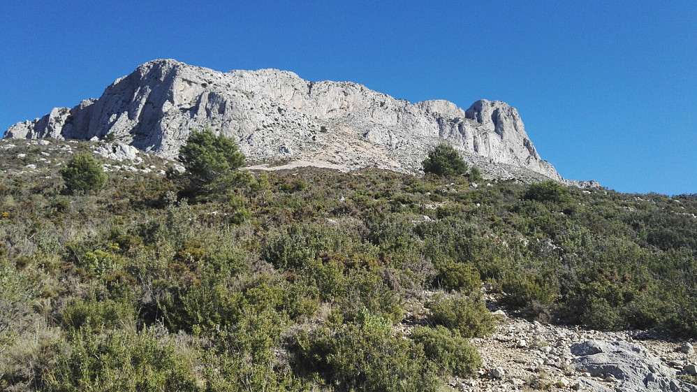 Sørflanken, der ruta går opp løsmassene midt i bildet, til tett oppunder bergryggen, før den traverserer mot venstre, og så kort og bratt opp på vestegga.