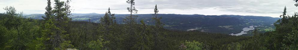 Panorama fra toppen. Skulle vært hogd litt mer.