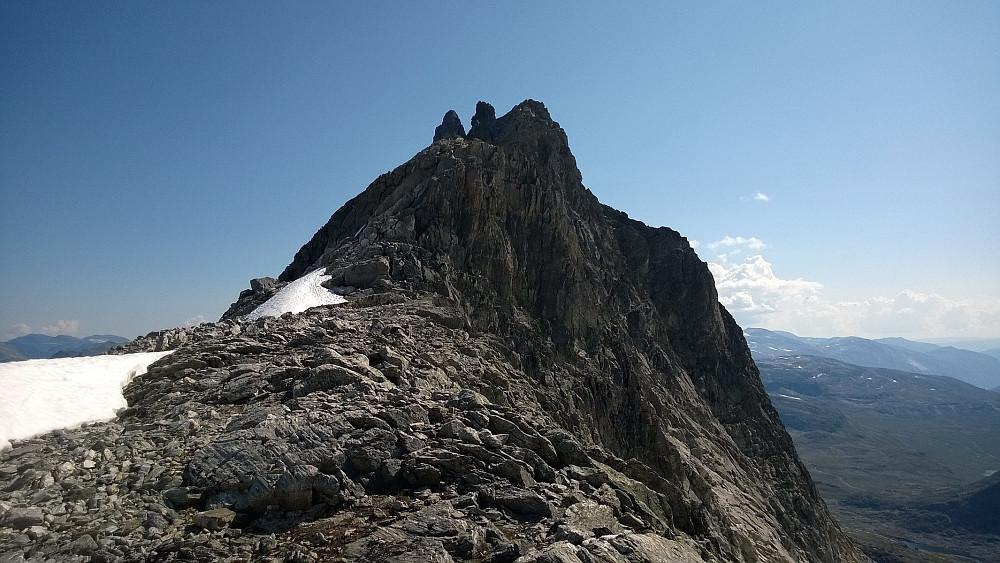 Toppen av Kvanndalstinden skimtes bakerst til venstre, mens piggen i midten er toppen av Torshammeren.