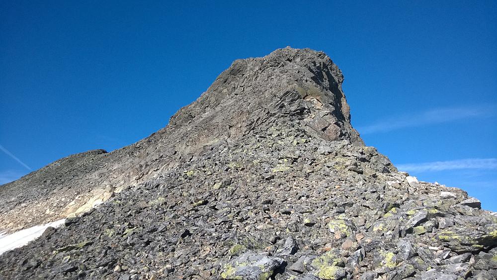 Toppen av Hjelledalstinden krever litt klyving fra Koldedalstind-siden.