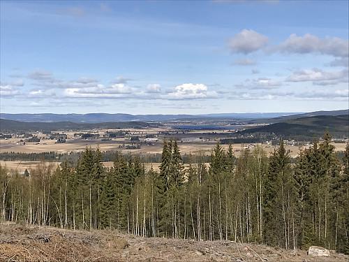Dagens fineste utsikt fra et hogstfelt på vei opp mot Losåsen