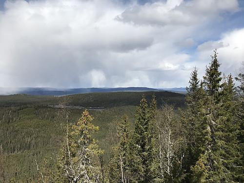 Fin utsikt fra en kolle like nedenfor toppunktet på Klokken. På bildet ser man tilbake mot Elsåsen