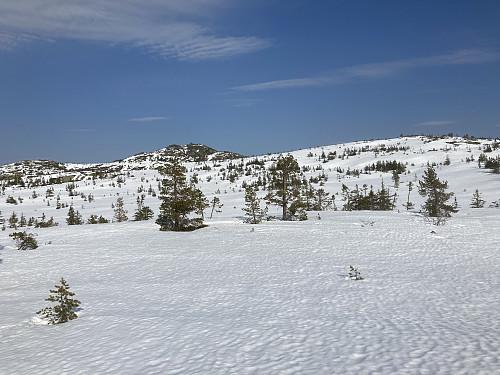 Så fort jeg kom opp på fjellet fra skaret kom Styggmann til syne. Honseterfjellet til høyre.