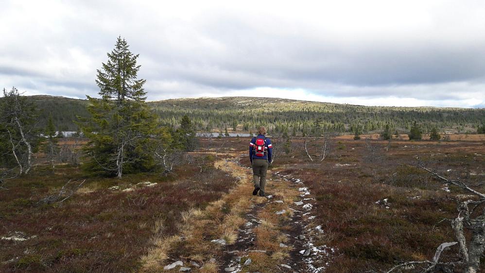 Hans Thorvald med Gråfjellet i bakgrunnen