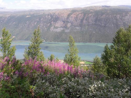 Flott utsikt mot Skim
