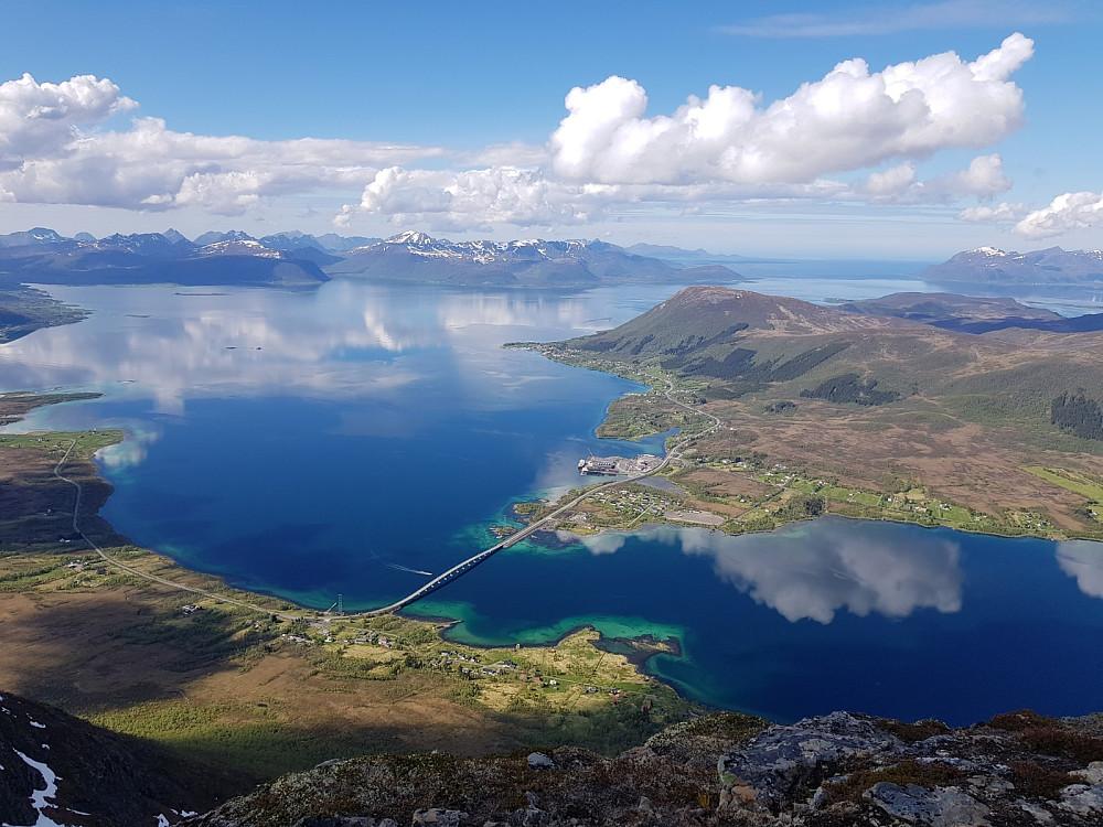 Flott utsikt fra Kvalsauktinden. Her ser vi Hognfjord