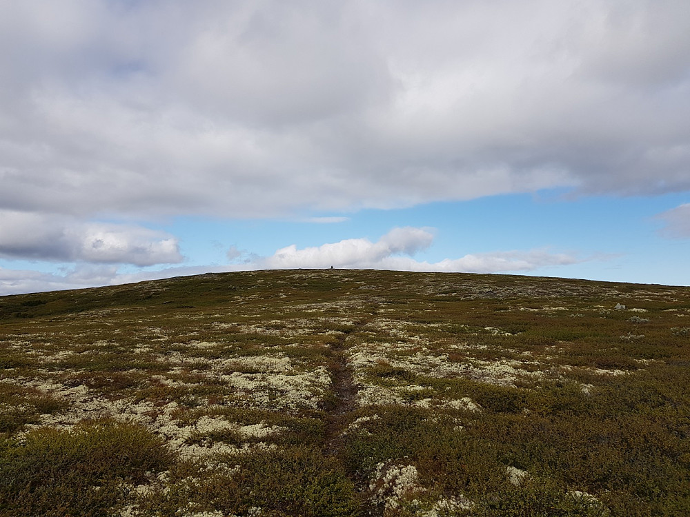 Rennefjellet nordaust