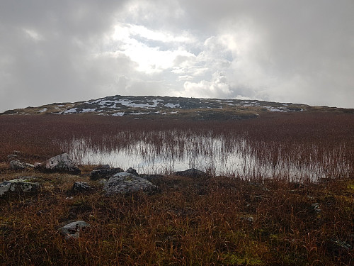 Fine omgivelser i fjellet