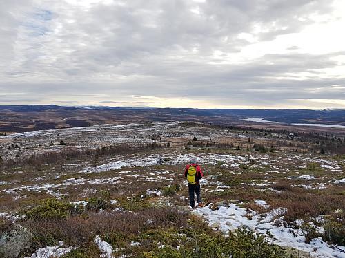 Mot søraust for Kjølafjellet