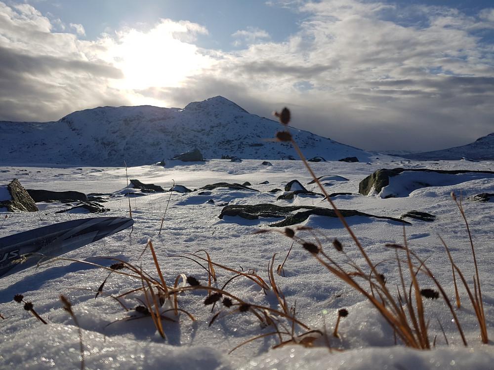 Øystre Fagerdalshøe i bakgrunnen