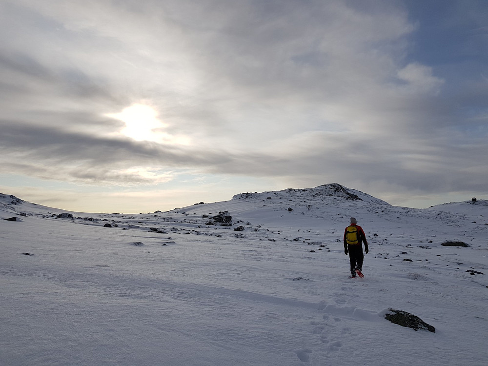 På vei ned fra Loppebolegge