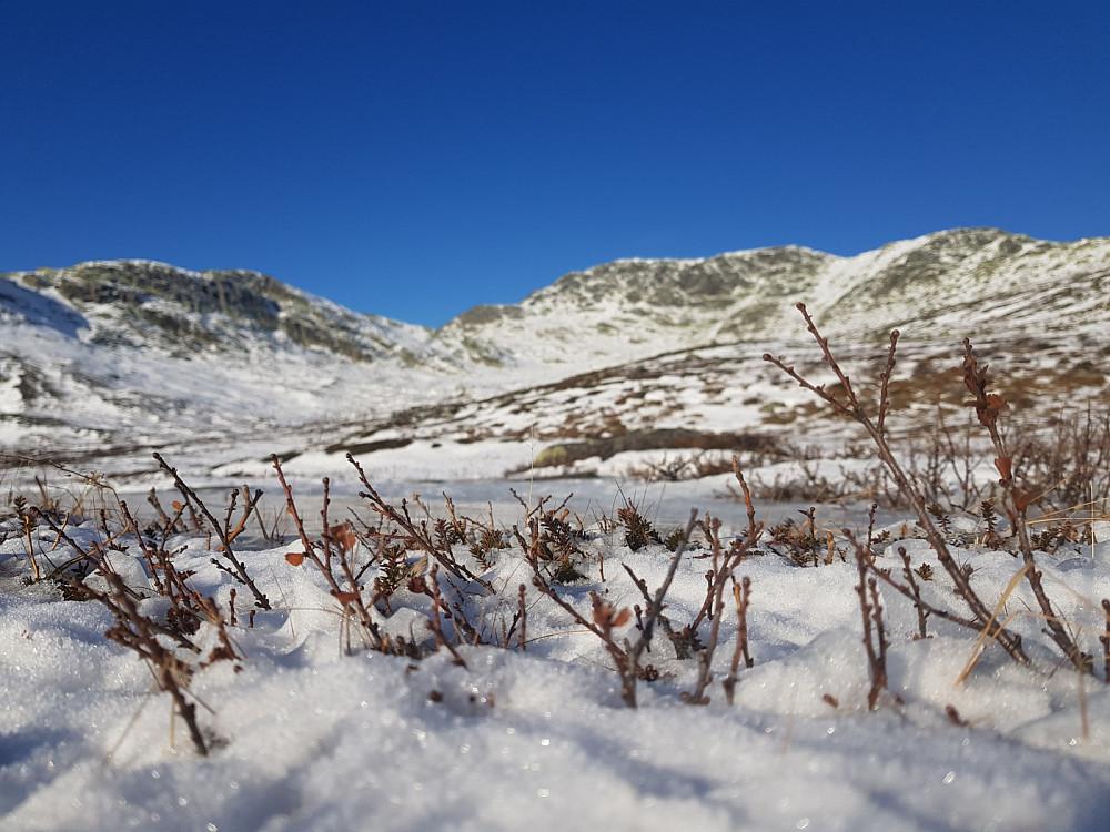 Flott dag i fjellet