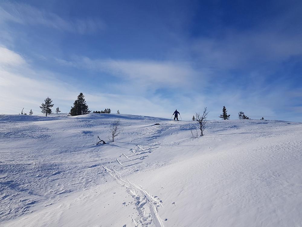 På vei til Tveitastølfjellet Sørøst