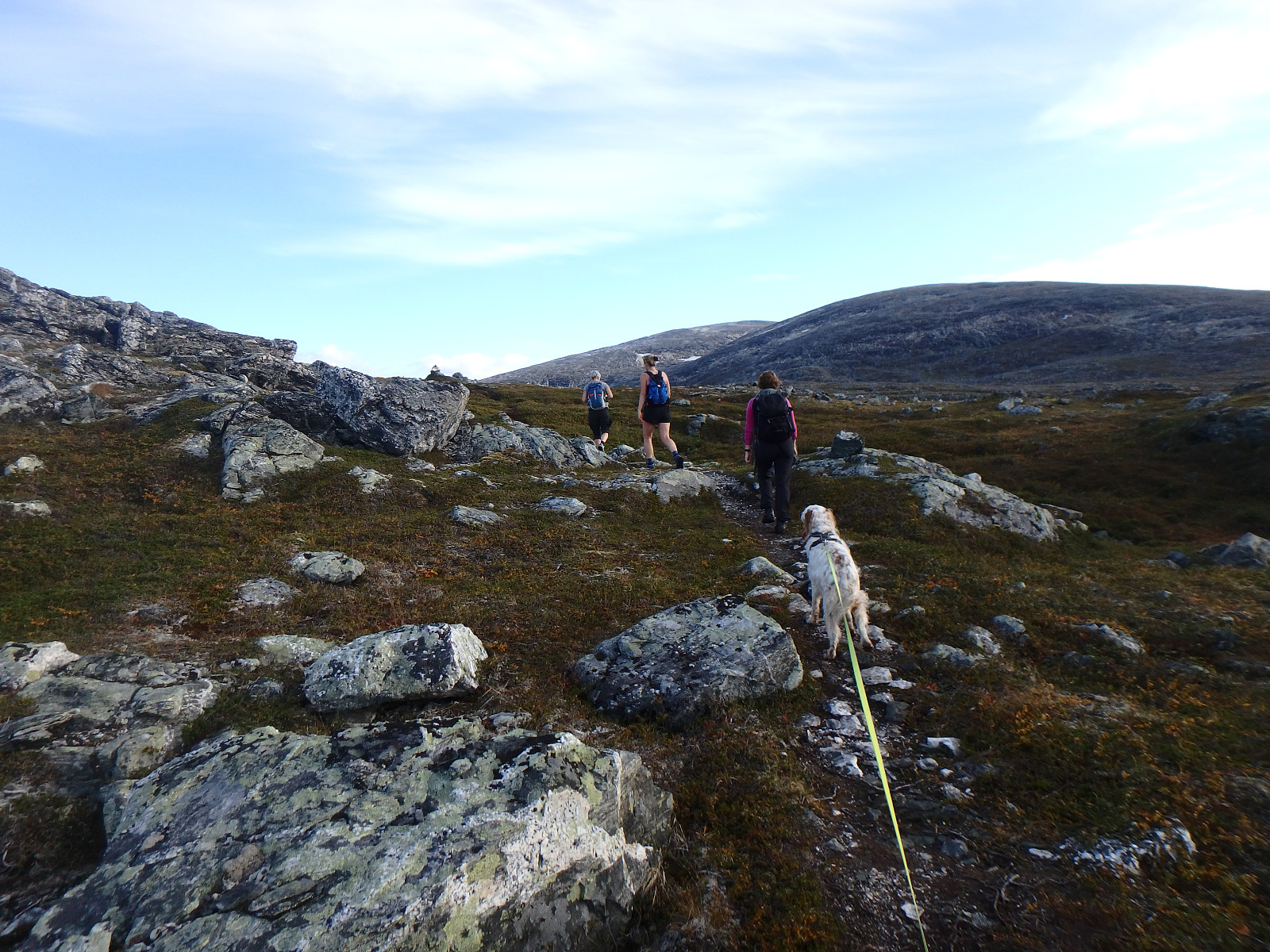 Turartikkel Blakollkoia 10 Pa Topp Tromso Skrevet Av Sola19