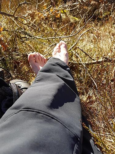 Vårfølelse når man kan lufte vinterbleike tær på topptur!