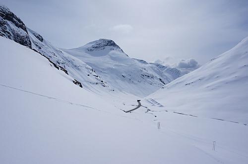 Tungt skiføre i våt nysnø innover Grasdalen.
