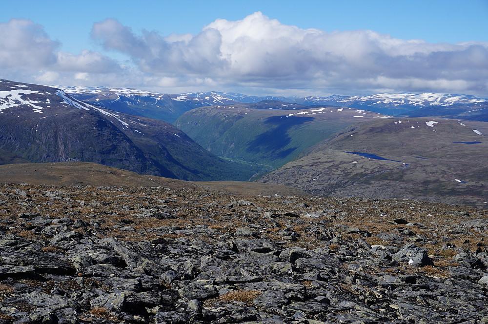 Ser nedover Drivdalen.
