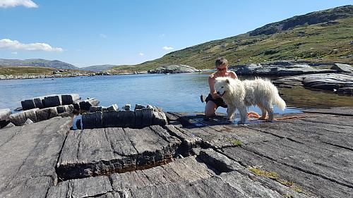 Vasking av hund med lano...