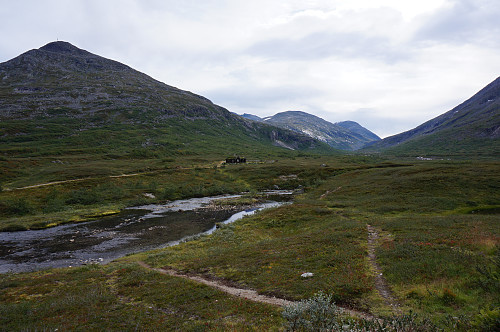 Ser innover Langfjelldalen.