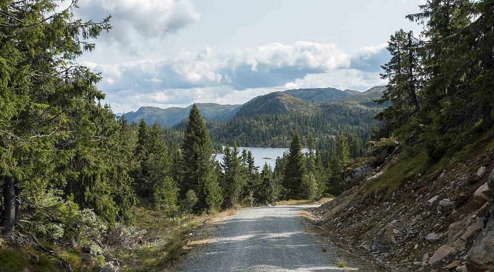 Turen startet og sluttet med 4 km grusvei fra Dypilen til Fjølaset