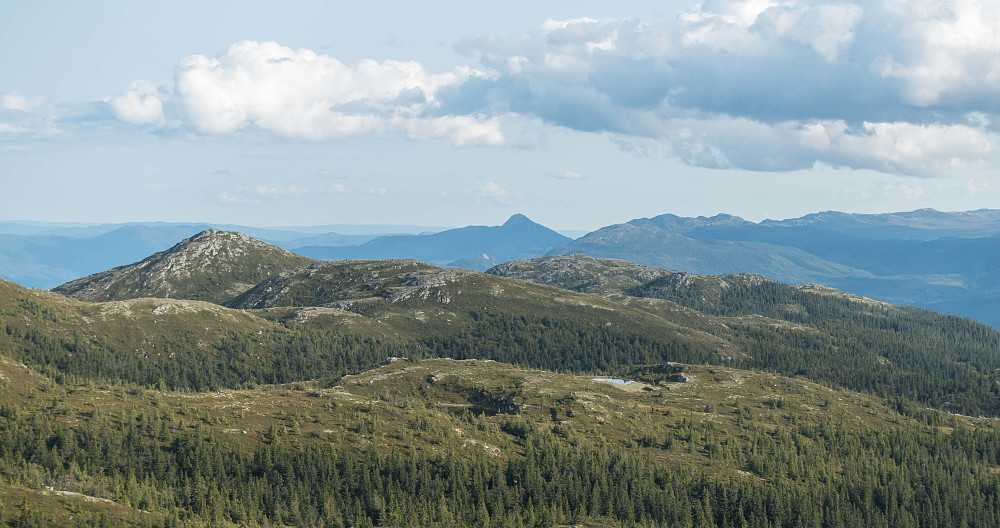 Utsikt mot Norefjell