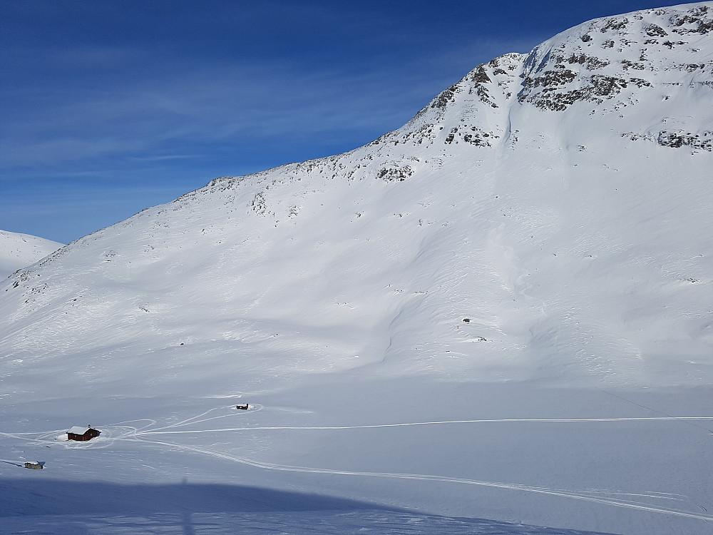 Vestrenna. Jeg gikk opp flanken bak hytta og gikk ryggen derfra. Kort parti med skia på sekk.