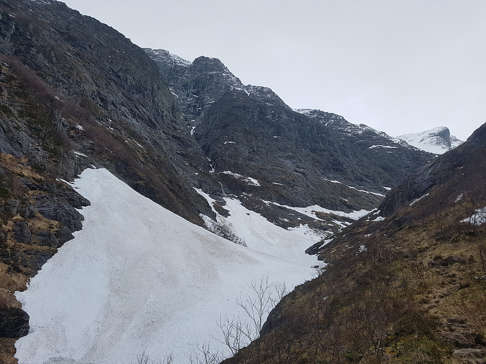 Gamle skred i Loftdalen på ca 450 moh