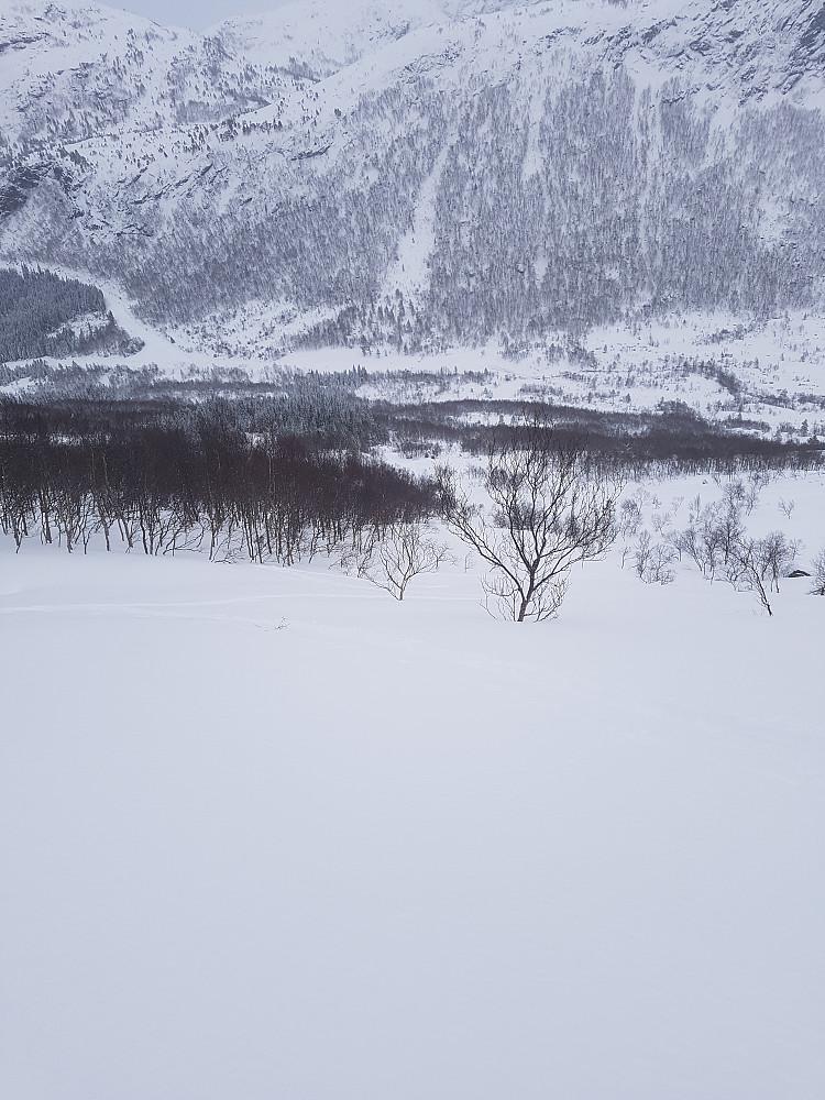 Skiterreng