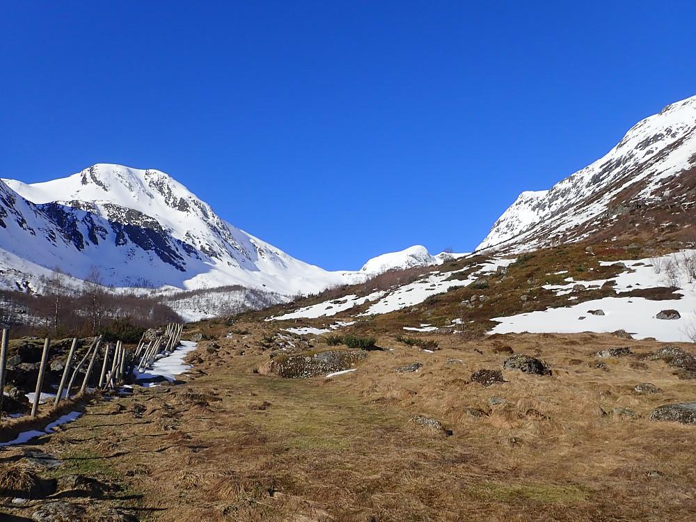 Frøysadalen er slak og lettgått. Skiene måtte i dag bæres ca 10 min opp til 500 moh. Det lå mer snø på andre siden av elva. Det hadde derfor lønt seg å parkere litt lengre nede og gått på motsatt side. Dagens først topp, Bustegane, sees her til venstre.